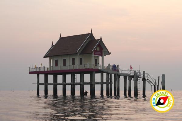 ครัวบ้านประมง  ร้านอาหารซีฟู้ด ริมทะเลบางขุนเทียน แนะนำ อร่อย Seafood  (33)