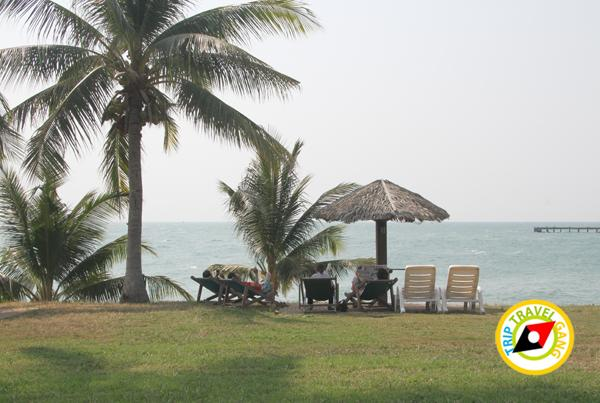 ระยอง รีสอร์ท Rayong Resort ที่พัก โรงแรม ติดทะเล. (42)