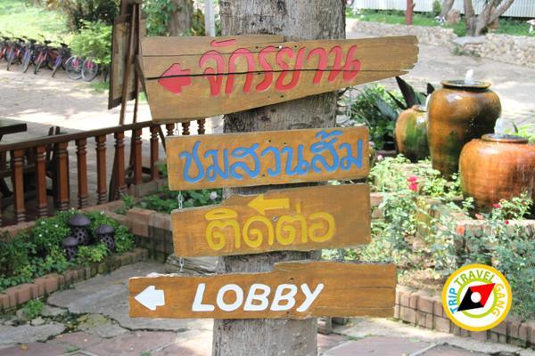 สถานที่ท่องเที่ยวมวกเหล็ก แก่งคอย สระบุรี Travel Guide Muak lek – Kaengkhoi Saraburi (15)