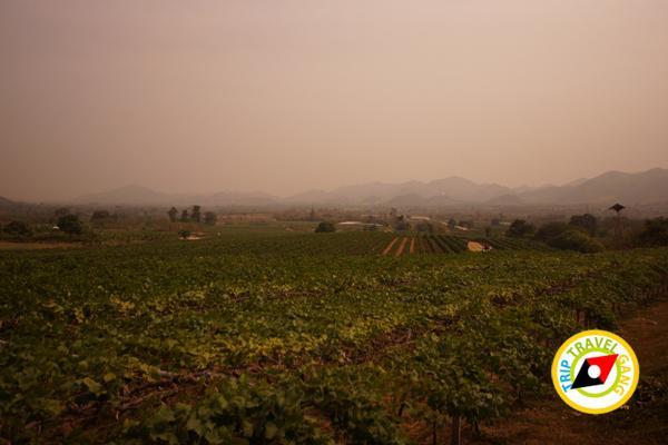 หัวหิน ชะอำ ปราณบุรี สถานที่ท่องเที่ยว ที่เที่ยว แหล่งเที่ยว HuaHin (2)