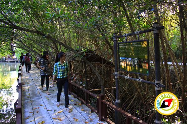 หัวหิน สถานที่ท่องเที่ยว ที่เที่ยว แหล่งเที่ยว การเดินทาง HuaHin (4)