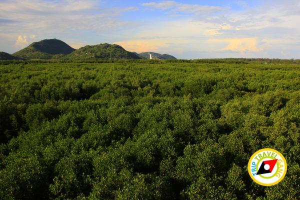 หัวหิน สถานที่ท่องเที่ยว ที่เที่ยว แหล่งเที่ยว การเดินทาง HuaHin (5)