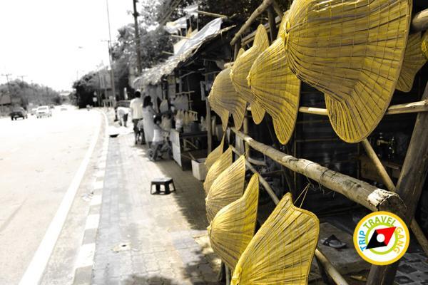 ท่องเที่ยววิถีชุมชน ท่องเที่ยวไทย เที่ยวสีเขียว แหล่งท่องเที่ยว (1)