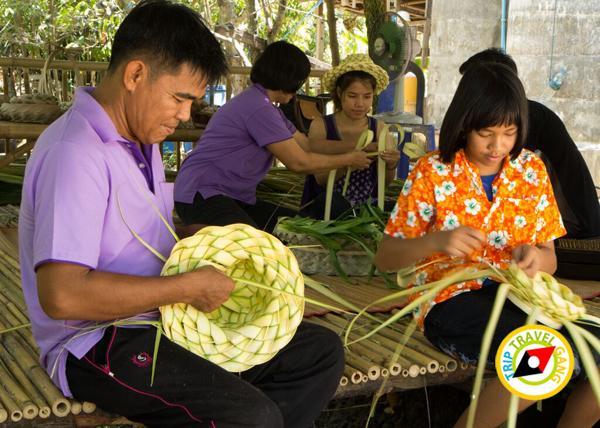 ท่องเที่ยววิถีชุมชน ท่องเที่ยวไทย เที่ยวสีเขียว แหล่งท่องเที่ยว (19)