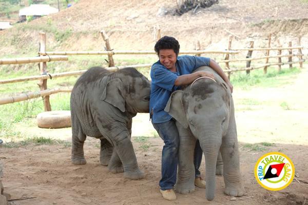 ท่องเที่ยววิถีชุมชน ท่องเที่ยวไทย เที่ยวสีเขียว แหล่งท่องเที่ยว (28)