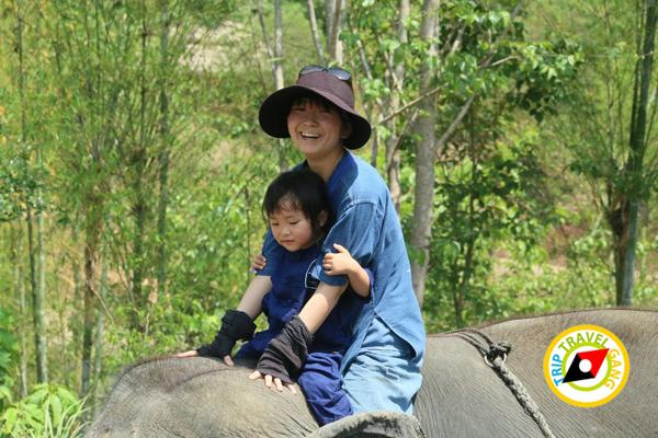 ท่องเที่ยววิถีชุมชน ท่องเที่ยวไทย เที่ยวสีเขียว แหล่งท่องเที่ยว (30)