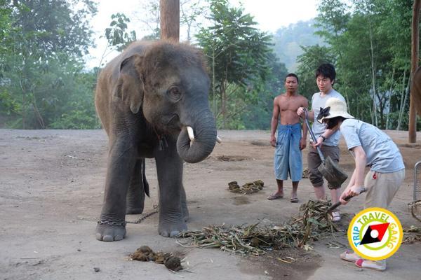 ท่องเที่ยววิถีชุมชน ท่องเที่ยวไทย เที่ยวสีเขียว แหล่งท่องเที่ยว (31)