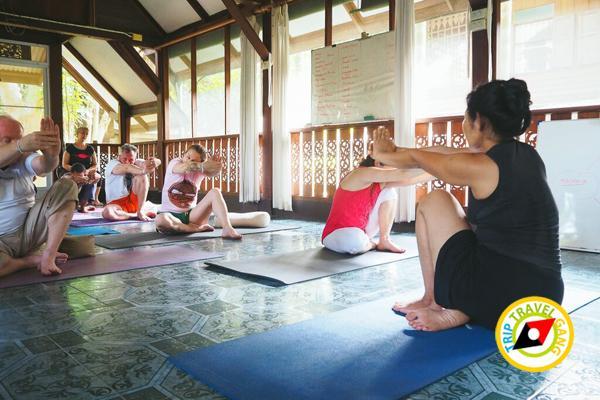 ท่องเที่ยววิถีชุมชน ท่องเที่ยวไทย เที่ยวสีเขียว แหล่งท่องเที่ยว (6)