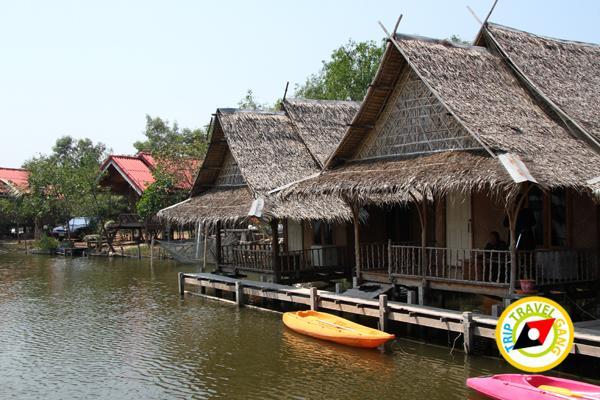 ร้านอาหาร ที่พักโฮมสเตย์ กินปู นอนดูทะเล อร่อยไม่อั้นกับซีฟู้ดจัดเต็ม บรรยากาศดี (5)
