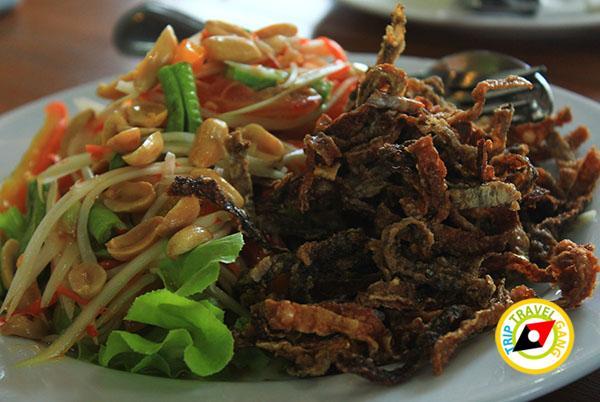 ที่กินเพชรบูรณ์ แนะนำร้านอาหารอร่อย บรรยากาศดียอดนิยม เขาค้อ ภูทับเบิก (10)