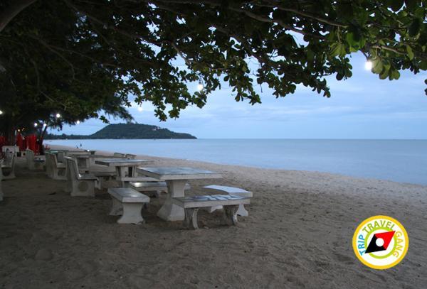 ร้านหนูโภชนา ร้านอาหารทะเล บ้านกรูด ที่กินแนะนำ อร่อย บรรยากาศดี ประจวบ (4)