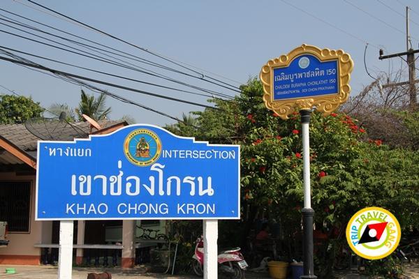 ปากคลองโฮมสเตย์ทีพักกินปูจันทบุรี (1)