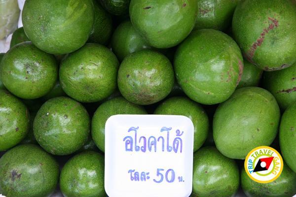 ร้านผลไม้ริมทาง มวกเหล็ก แก่งคอย สระบุรี (5)