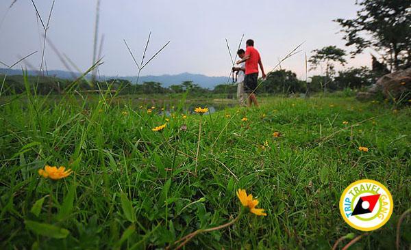 ศูนย์ศึกษาธรรมชาติเจ็ดคต โป่งก้อนเส้า สระบุรี (5)