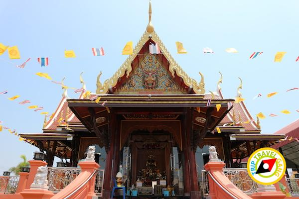 ท่องเที่ยวที่กินเพชรบุรี บางตะบูน บ้านแหลม งานเปิดโลกทะเลโคลน 2559 (10)