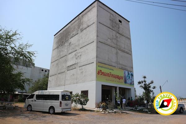 ท่องเที่ยวที่กินเพชรบุรี บางตะบูน บ้านแหลม งานเปิดโลกทะเลโคลน 2559 (15)