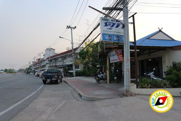ท่องเที่ยวที่กินเพชรบุรี บางตะบูน บ้านแหลม งานเปิดโลกทะเลโคลน 2559 (21)