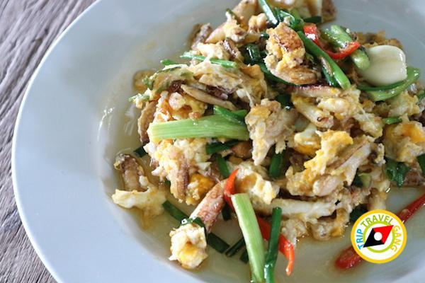ท่องเที่ยวที่กินเพชรบุรี บางตะบูน บ้านแหลม งานเปิดโลกทะเลโคลน 2559 (33)