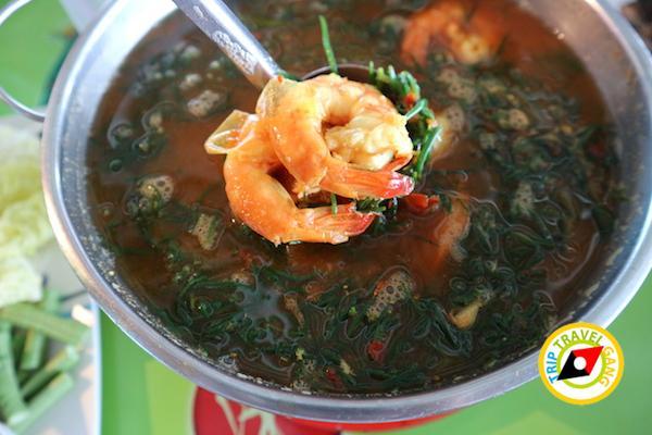 ท่องเที่ยวที่กินเพชรบุรี บางตะบูน บ้านแหลม งานเปิดโลกทะเลโคลน 2559 (7)