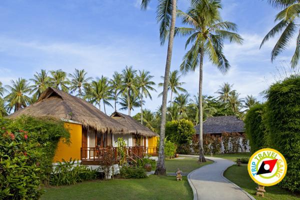 GLOW Elixir Koh Yao Yai - Resort View from the Sea โกลว์ อีลิกเซียร์ เกาะยาวใหญ่ รีสอร์ท (2)
