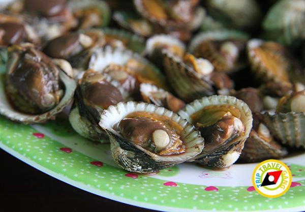 ร้านโฮมกระเตงชาวเล คลองโคน ร้านอาหารอร่อยคลองโคน สมุทรสงคราม (4)