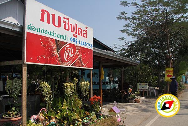 ร้าน กบซีฟู้ด ที่กินคลองโคน ร้านอาหารอร่อยคลองโคน สมุทรสงคราม (1)