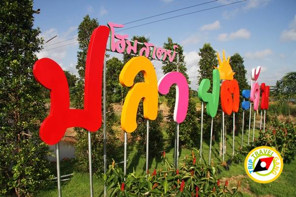 ปลายตะวันโฮมสเตย์ที่พักกินปูจันทบุรี (19)