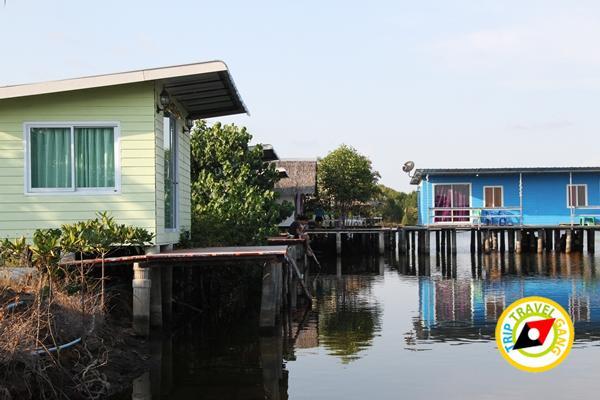 พาเพลินโฮมสเตย์โรงแรม รีสอร์ท ที่พักกินปูจันทบุรี (25)