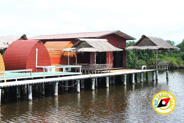 พาเพลินโฮมสเตย์โรงแรม รีสอร์ท ที่พักกินปูจันทบุรี (80)