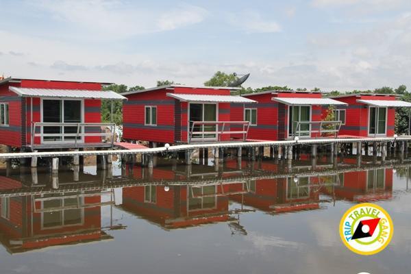 พาเพลินโฮมสเตย์โรงแรม รีสอร์ท ที่พักกินปูจันทบุรี (95)