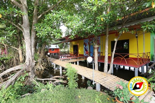 เมืองบางชัน โฮมสเตย์ ที่พักกินปูจันทบุรี (40)