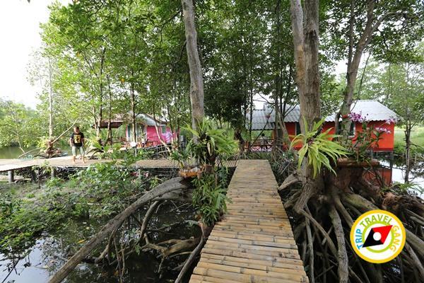 เมืองบางชัน โฮมสเตย์ ที่พักกินปูจันทบุรี (43)