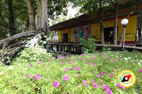 โฮมสเตย์จันทบุรี ที่พักกินปู (9)