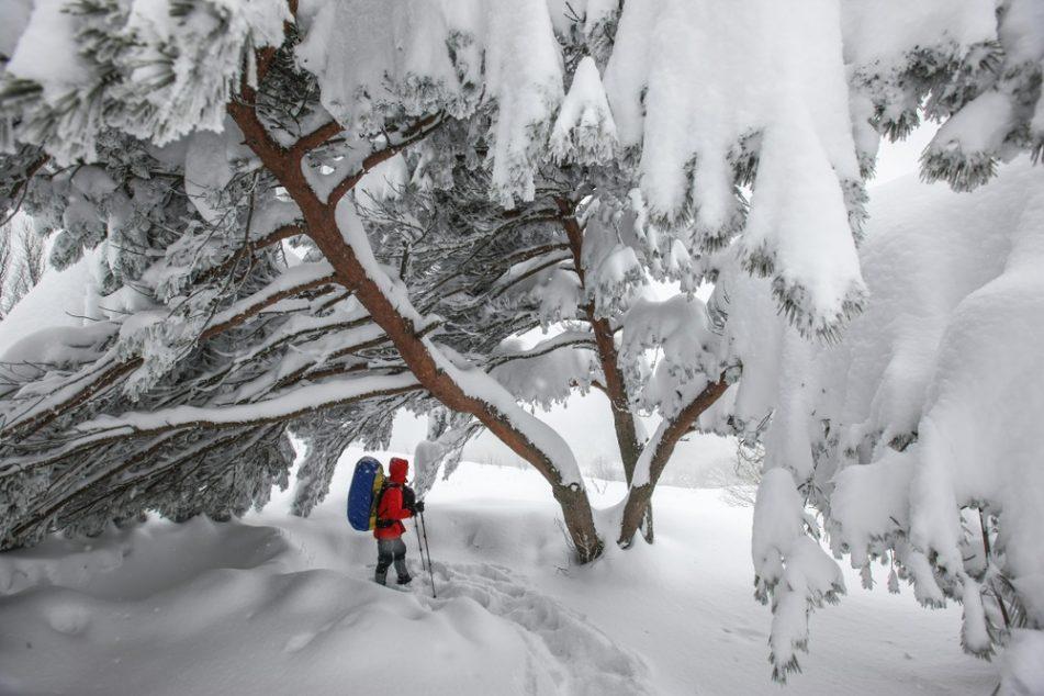 หนาวนี้...เกาหลีมั้ย? แจก 15 พิกัดเที่ยวฤดูหนาวในเกาหลีเด็ดๆ ที่ อยากชวนให้ไปโดนกัน!